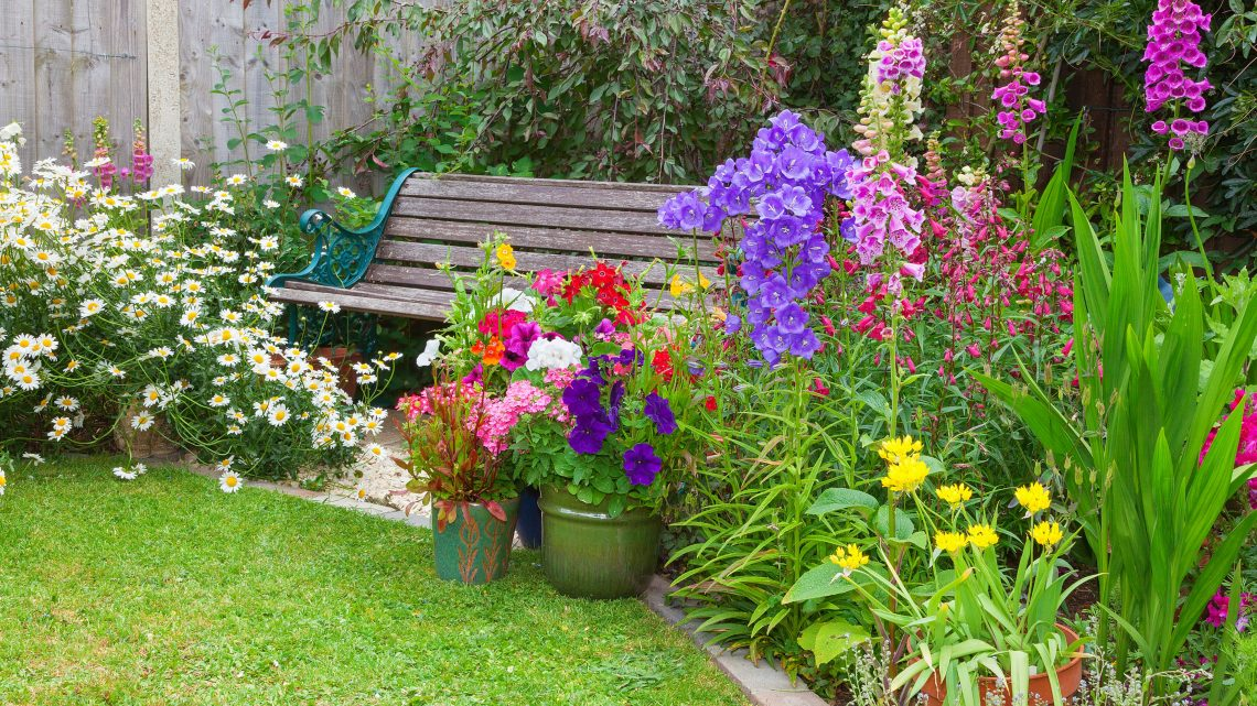 Gardening for Care Homes – Garden Project